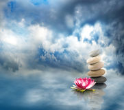 Free Image Of Stones And Lotus Flower On The Water Closeup Stock Photography - 98522932