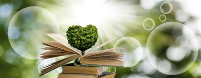 Image Of Tree In The Form Of Heart On Books Royalty Free Stock Images
