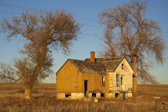 Image of a old abandoned house with trees Royalty Free Stock Photos