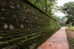 Image of old mossy wall in day time for background usage. Stock Photos