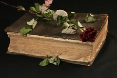 Image of old open-book Royalty Free Stock Images