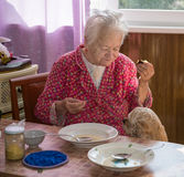 Image of old woman Stock Images