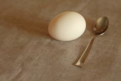 Image one egg and a metal teaspoon of stainless steel on a gray fabric without a flash in warm tones.  Stock Photography