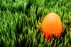 Image of an orange Easter egg on green grass Royalty Free Stock Photos