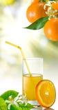Image of orange  and orange juice close-up Royalty Free Stock Photos