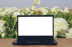 Image of outdoors with open laptop and empty white screen for copy space royalty free stock image