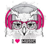 The image of the owl in the glasses and headphones. Vector illustration. Stock Photo