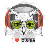 The image of the owl in the glasses and headphones. Vector illustration. Royalty Free Stock Images