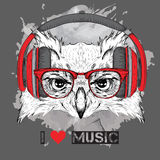 The image of the owl in the glasses and headphones. Vector illustration. Royalty Free Stock Photography