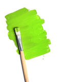 Image of paintbrush and green paint spot isolated Stock Photography