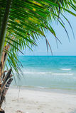 Image of palm tree and white sand beach from Thailand Stock Photography