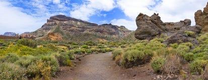 Image panoramique de la montagne sur l'île de Ténérife Images stock