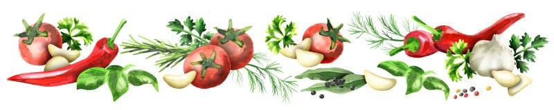 Image panoramique des épices et des herbes illustration de vecteur