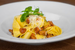 Image of pasta with chanterelle served in white dish. Close image of pasta with cheese Royalty Free Stock Images