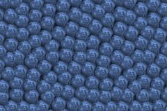 Bluish background with pearls. Image of pearls grouped and clenched as a human manifestation Royalty Free Stock Image