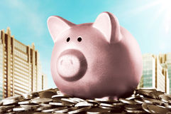 Image of piggy bank on the stop of coins Stock Image