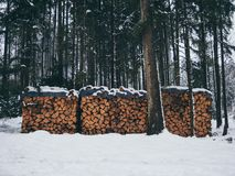 Image of pile of wood with snow in the forest in the winter stock photos