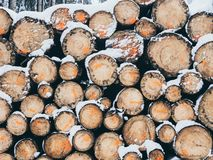 Image of pile of wood with snow in the forest in the winter stock photo