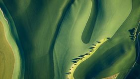 Aerial image of many trees on wheat fields in Washington stock photography