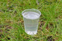 Plastic cup with water in the grass. Image of plastic cup with water in the grass royalty free stock photos