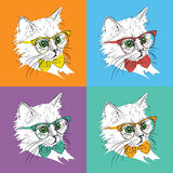 Image Portrait of cat in the cravat and with glasses. Pop art style vector illustration. Stock Photo