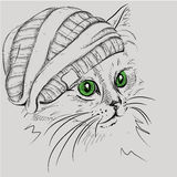 Image Portrait cat in the hat. Vector illustration. Stock Photo