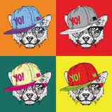 Image Portrait of cheetah in the glasses and in hip-hop hat. Pop art style vector illustration. Royalty Free Stock Images