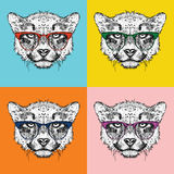 Image Portrait of cheetah in the glasses. Pop art style vector illustration. Stock Photo
