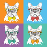 Image Portrait of dog in the cravat and with glasses. Pop art style vector illustration.