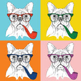Image Portrait of dog in the glasses and with  tobacco pipe. Pop art style vector illustration Royalty Free Stock Photos