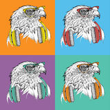 Image Portrait of eagle in a baseball cap with glasses. Pop art style vector illustration. Stock Photo