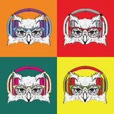 Image Portrait of owl in a baseball cap with glasses. Pop art style vector illustration Royalty Free Stock Images