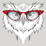 Image Portrait owl in the glasses.  / african / indian / totem / tattoo design. Use for print, posters, t-shirts. Hand draw  Royalty Free Stock Image