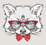 Image Portrait raccoon in the cravat and with glasses. Hand draw vector illustration. Stock Image