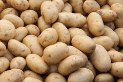 Background of potatoes. Image of Potatoes at street market Royalty Free Stock Image