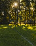 Image with powerful shadows and highlights / Image of a football court stock image