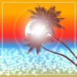 Evening sunset in tropics a illustration. Stock Photos