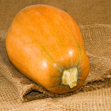 Image of pumpkin on matting close-up Royalty Free Stock Photos
