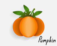The image of pumpkin Royalty Free Stock Photo