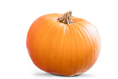Image of a pumpkin Stock Photography