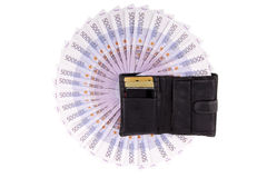 Image purse with euros. On the white Stock Image
