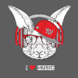 The image of the rabbit in the glasses, headphones and in hip-hop hat. Vector illustration. Stock Photography