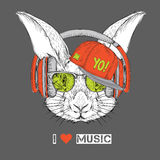 The image of the rabbit in the glasses, headphones and in hip-hop hat. Vector illustration. Royalty Free Stock Photo