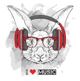 The image of the rabbit in the glasses and headphones. Vector illustration. Royalty Free Stock Photography