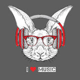 The image of the rabbit in the glasses and headphones. Vector illustration. Stock Images