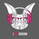 The image of the rabbit in the glasses and headphones. Vector illustration. Royalty Free Stock Photos