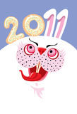 Image of the rabbit with numeral 2011 new years. New year's hare 2011 white Royalty Free Stock Photo