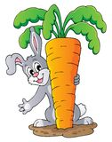 Image with rabbit theme 1 Stock Images