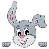 Image with rabbit theme 5 Stock Image