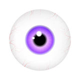 Image of realistic human eye ball with colorful pupil, iris. Vector illustration  on white background. Stock Photography